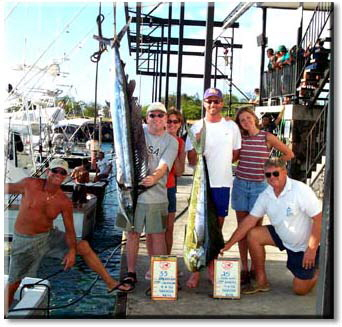 spearfish, mahimahi caught off the Kona coast of Hawaii